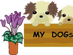 plant_pet.png